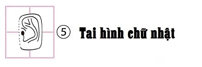 tai-hinh-chu-nhat