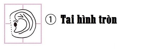 tai-hinh-tron
