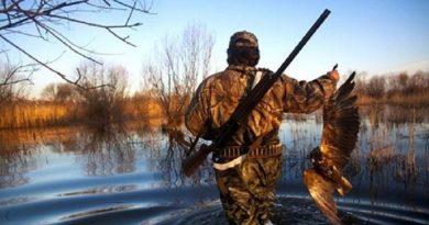 Nhân quả báo ứng: Suốt 18 năm chịu đau đớn giày vò vì sát hại quá nhiều chim