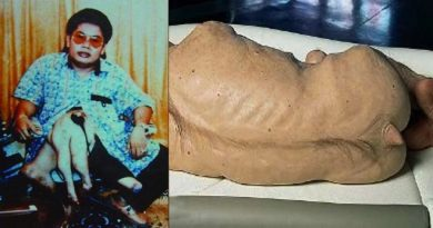 Nghiệp báo luân hồi: Ly kỳ chuyện người ĐẦU THAI thành lợn – Lợn đầu thai thành người