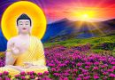 Phật dạy về 9 loại người chỉ nên bắt tay không nên nói chuyện