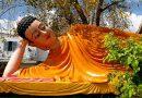 Bài kinh hồi hướng tụng đọc ngày Phật Nhập Niết Bàn chuẩn nhất