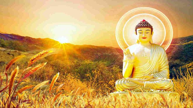 Con người than khổ muốn được cứu độ, Đức Phật trả lời thật bất ngờ